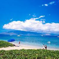 Maui still a safe bet